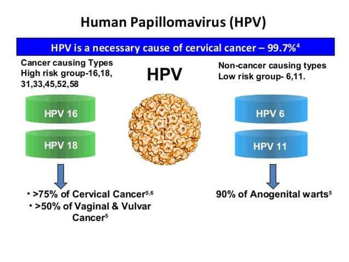 Cancers caused by hpv in females