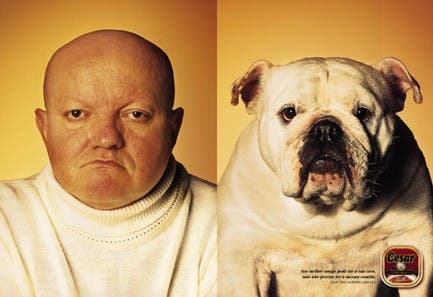 man-looking-like-bulldog