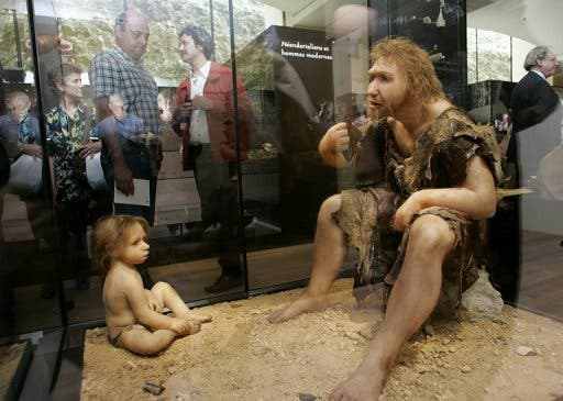 Visitors of the Museum for Prehistory in Eyzies-de-Tayac, France observe a Neanderthal man ancestor's reconstruction (AFP/File, Patrick Bernard)