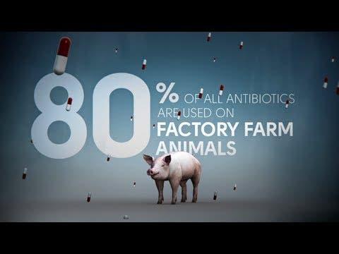 Photo: ecolutionist.com