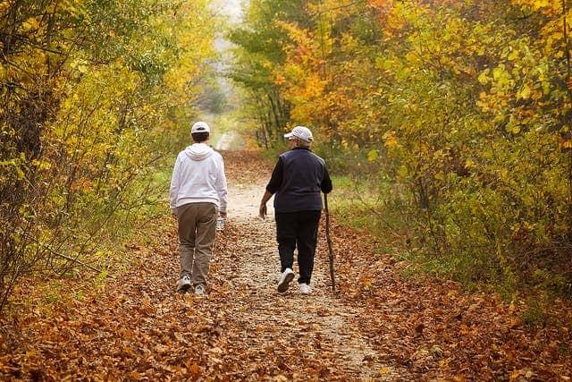 depression walk nature
