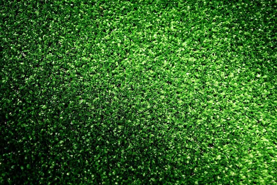 Plastic grass.