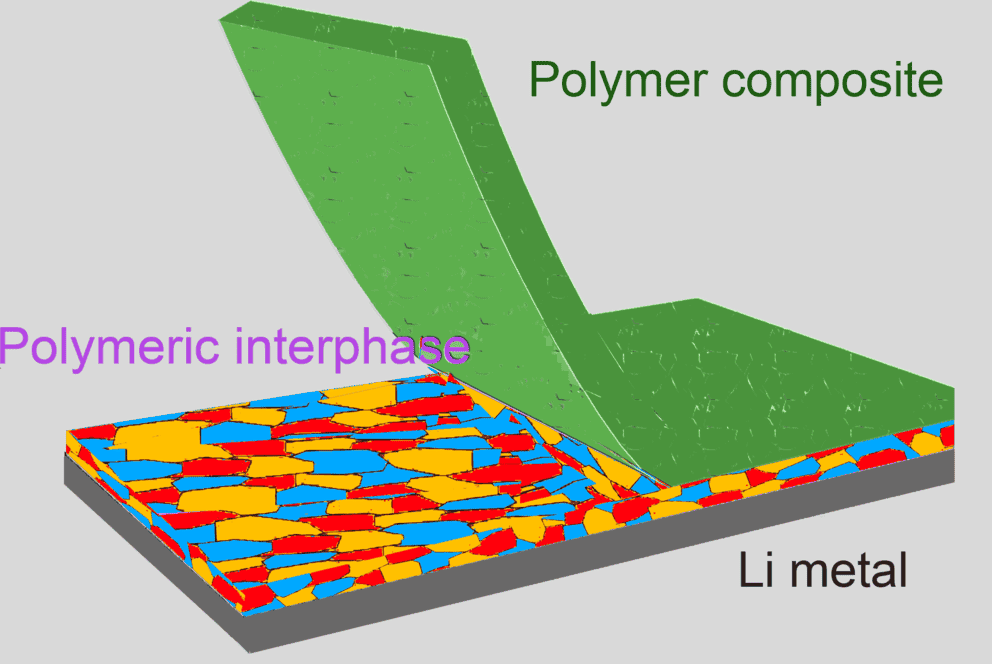 A reactive polymer composite, picturing the electrochemical interface between lithium metal anode and electrolyte is stabilized by the use of a reactive polymer composite. Credit: DONGHAI WANG.