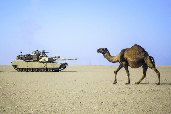 Desert tank.